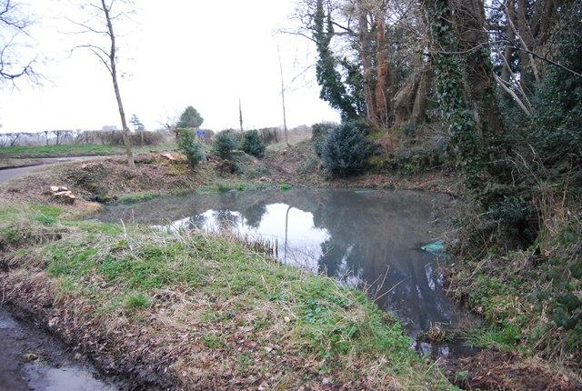 Pond, Hawkley Rd