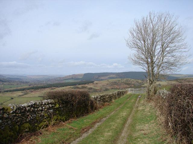 Mallabay Hill at Larbreck