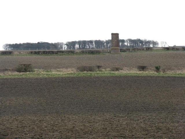Fields at Kippilaw