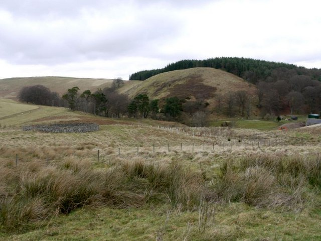 Sheepfold west of Hazeltonrig