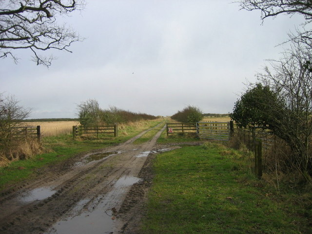 Farm track near Mersehead RSPB Nature Reserve