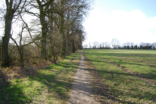 Footpath follows the line of the trees
