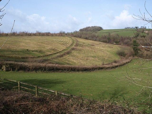 Field boundary near Goodstone