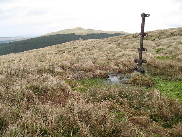 Isolated Fencepost