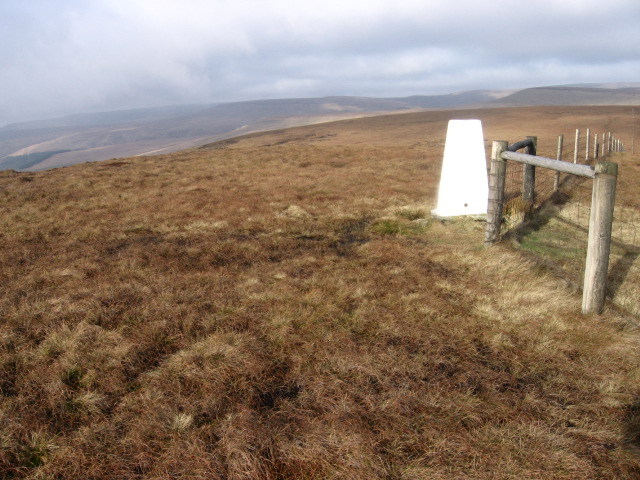 Dead Edge End trig point S1779
