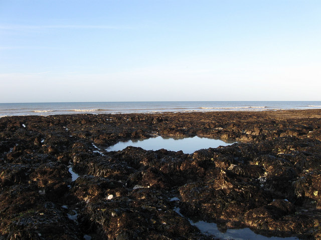 Rock Pool, Telscombe Beach