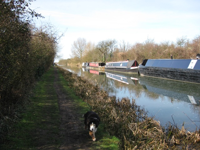 Canal towpath opposite Bate's Boatyard