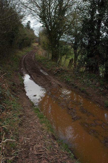 Green lane to Welsh Newton