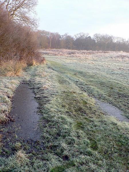 Frosty morning, Sandy Hill