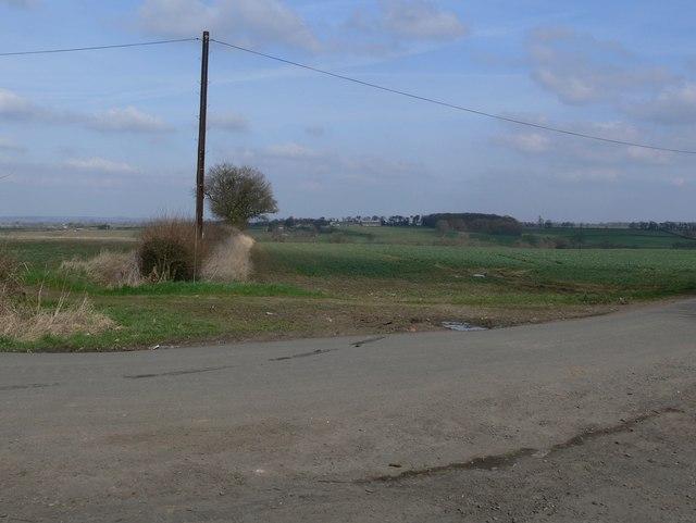 Farmland north of Ridgemere Lane