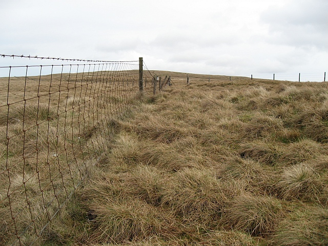 Fence junction to the West of Lecket Hill