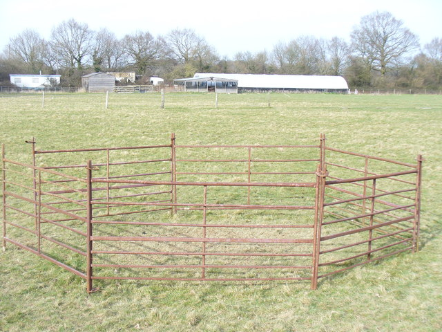 Sheepfold by Holland's Heath Farm
