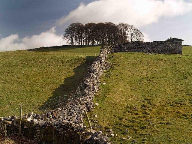 Yorkshire Dale's limestone wall