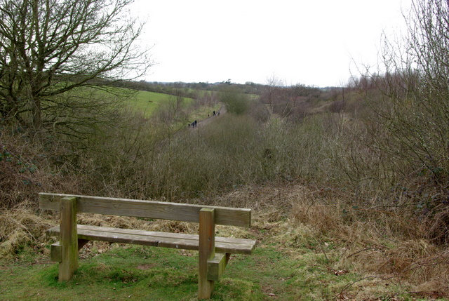 View over Ryton Pools Country Park