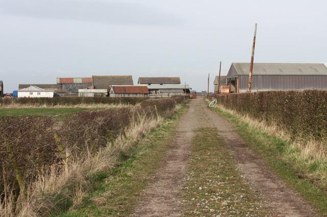Moss Edge Farm