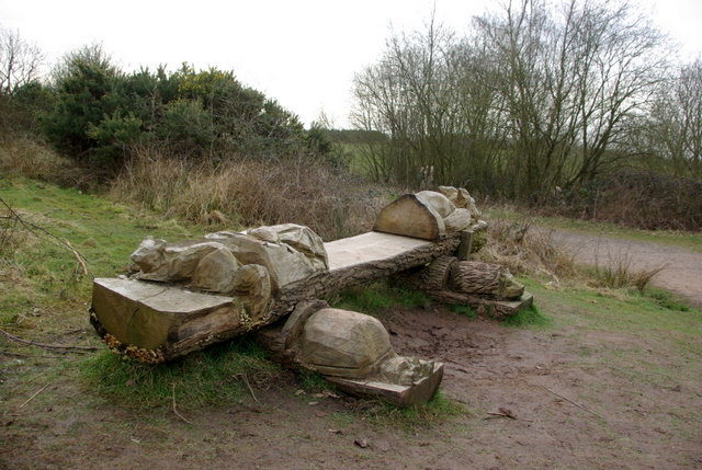Carved bench by the entrance to Ryton Wood