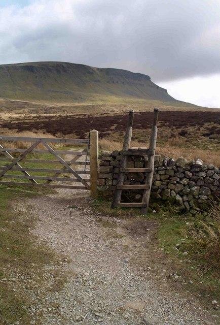 Ladder stile or gate