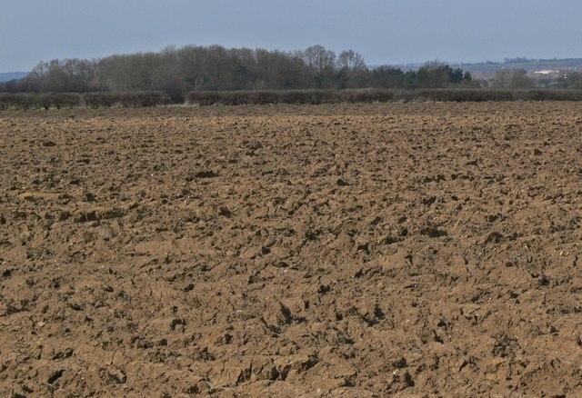 Ploughed field near Barkby