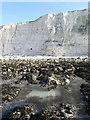 TQ3801 : Cliffs near Saltdean by Simon Carey