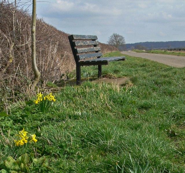 Seat along Barkby Holt Lane