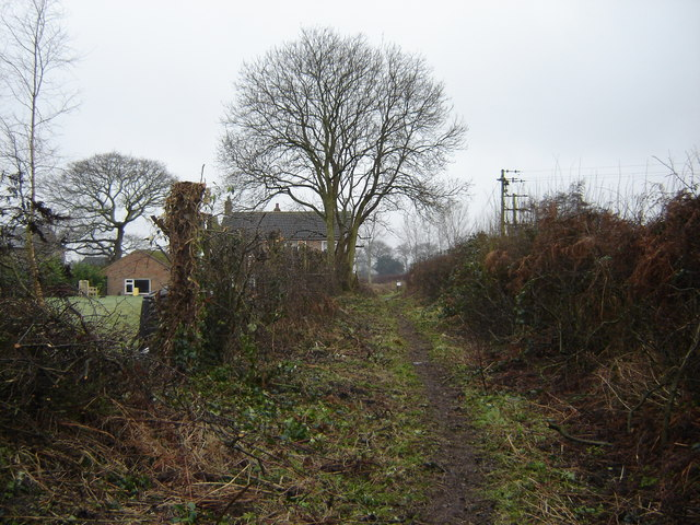 Footpath  from  Youlton
