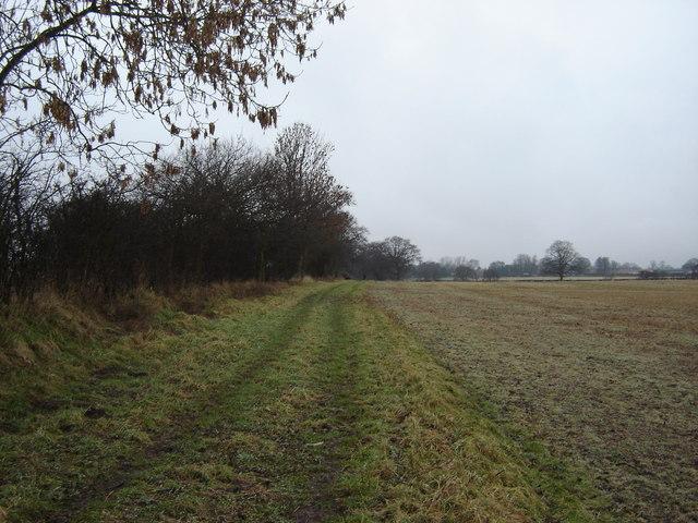 Field  track  Tollerton