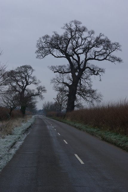 View along the lane towards Charlecote