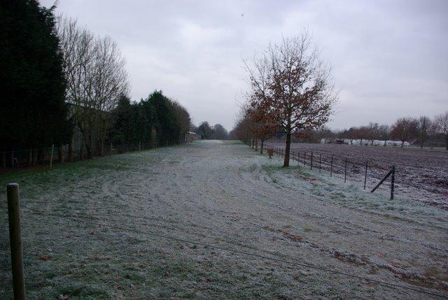 Bridleway in Charlecote
