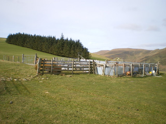 Sheepfold above Bryn-gwyn farm