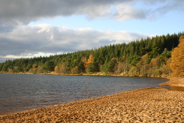 Shoreline of eastern end of Loch Morlich