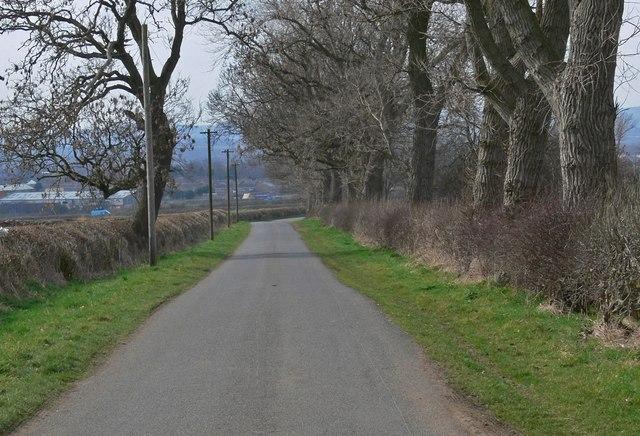 Looking west along Ridgemere Lane