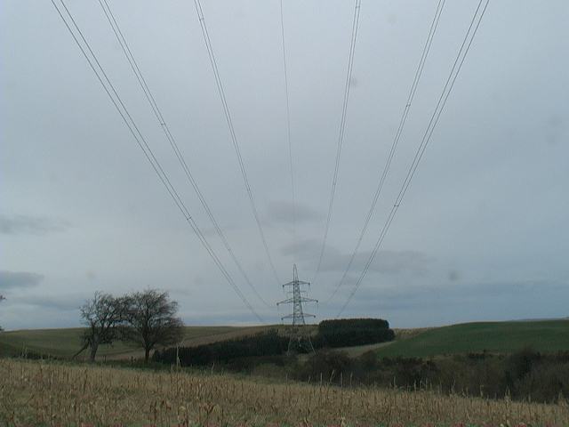 Electricity lines spanning the Lilburn Burn near Ilderton