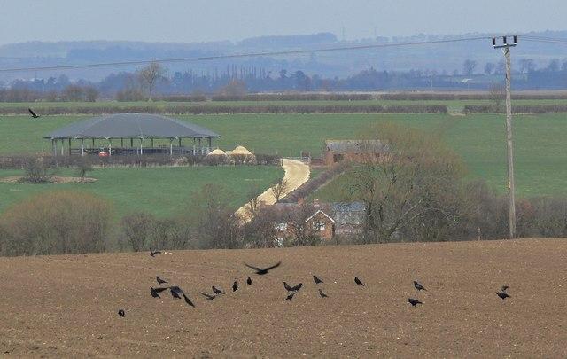 View towards Newstead Farm