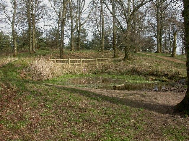 Badbury Rings, pond