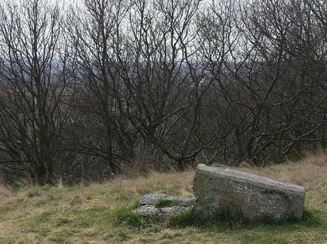 Sunrise Hill triangulation point