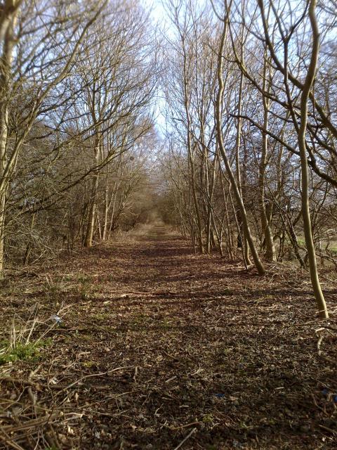 Path of dismantled railway line