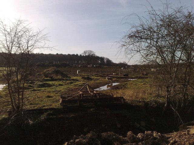 Farmland near Pottrow Woods
