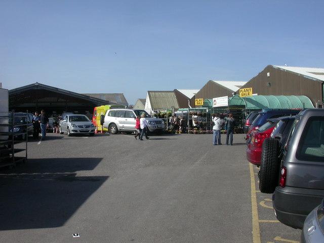 Wimborne Market
