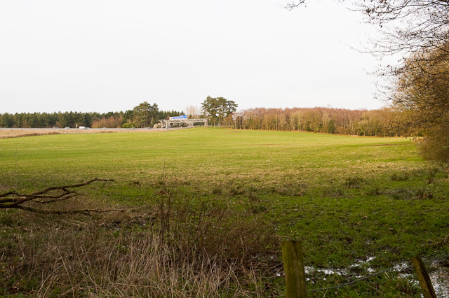 Field and Matthew's Moor, near Rownhams