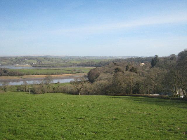 Field on Pentillie Castle estate
