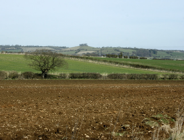 2009 : North east between Stanton Prior and Corston