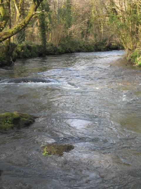 The River Lynher below Newbridge