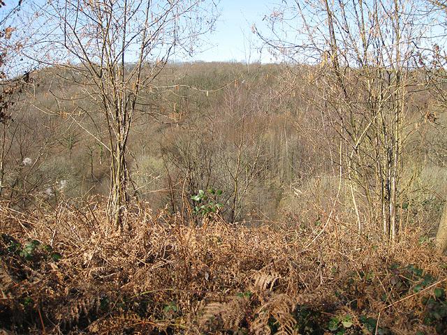 View across the Pentaloe Valley