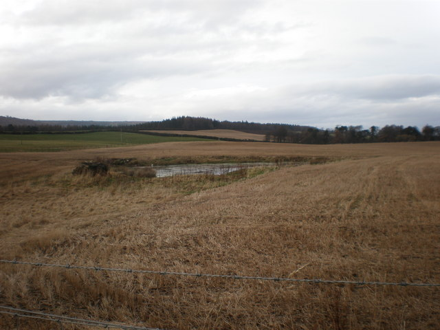Pond in Field at Darris