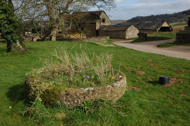 Stone trough at Lewstone