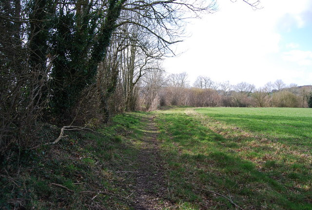 Footpath by the hedge (2)
