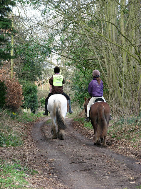 Horse riders on bridleway