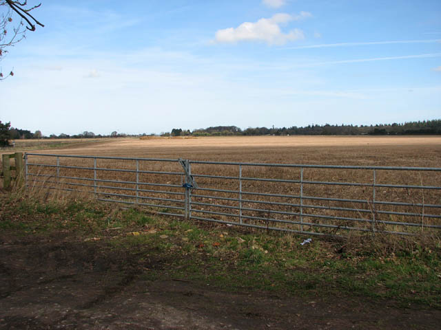 A very wide field gate