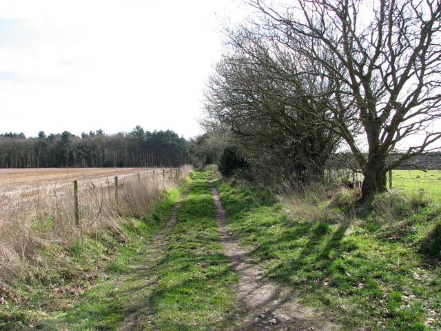 Bridleway to Houghen Plantation