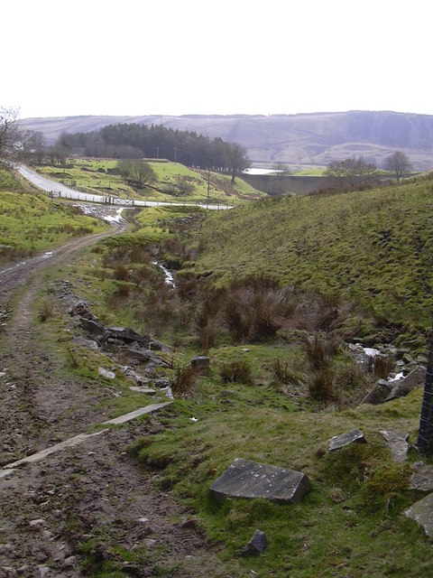 Moorland Track and Stream